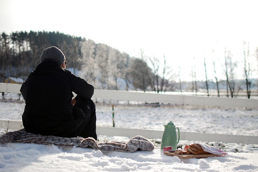 vinterpicknick