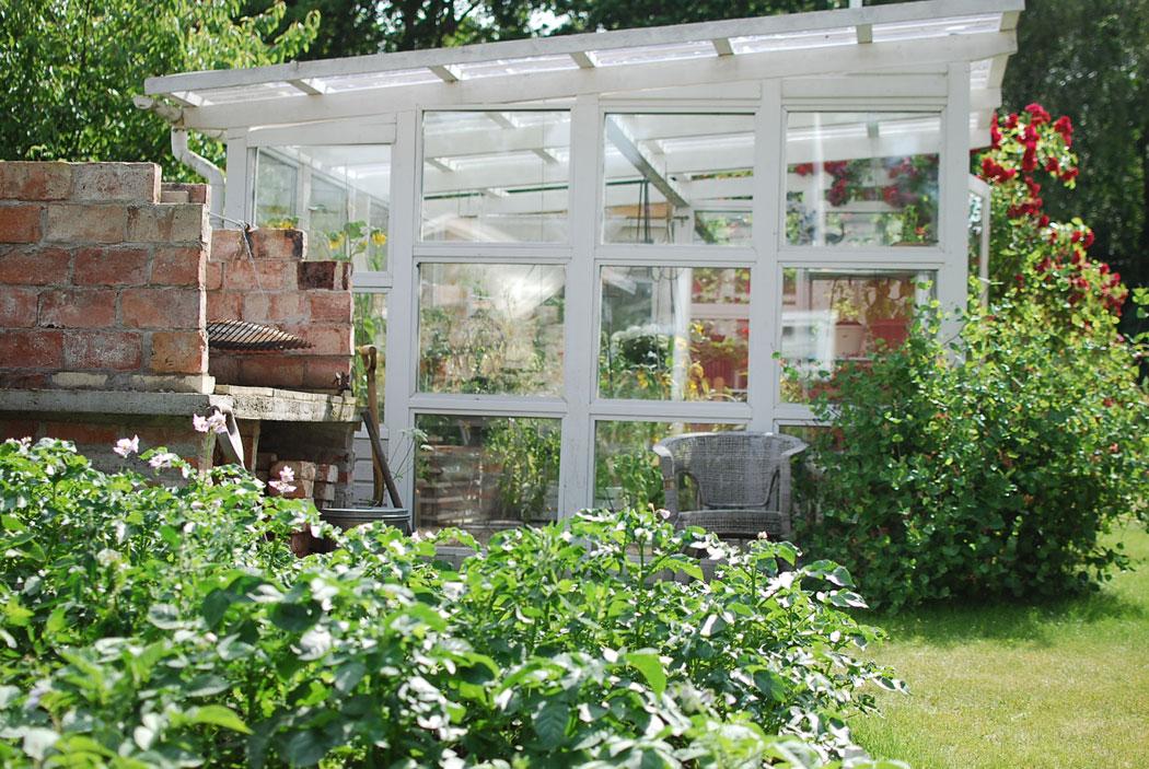 Vårt växthus i sommarstugan