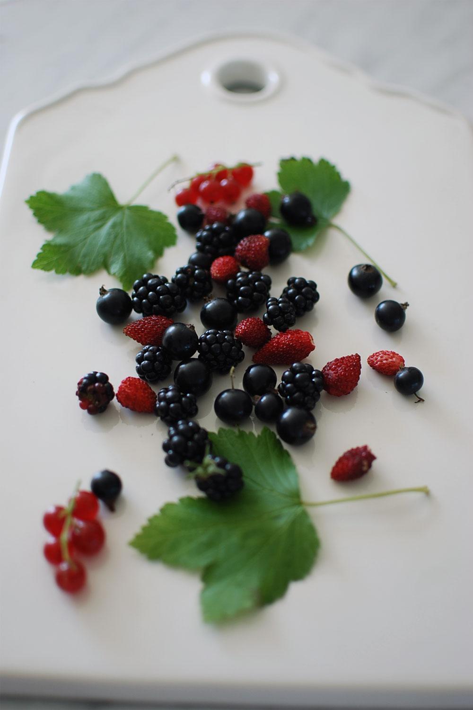trädgårds_smoothie