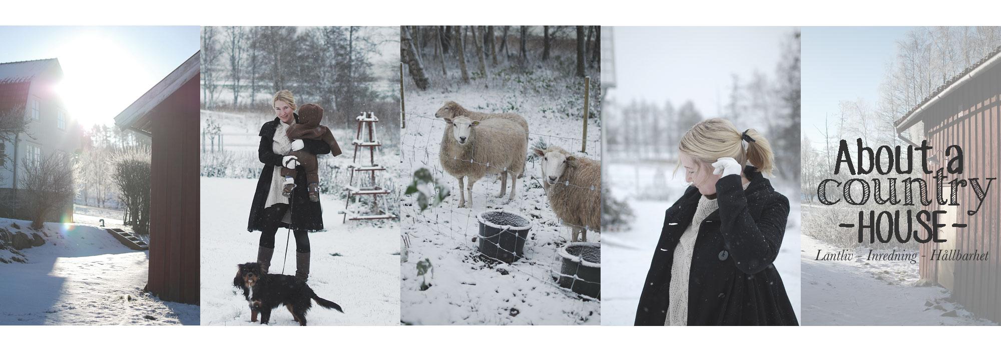 header_vinter2