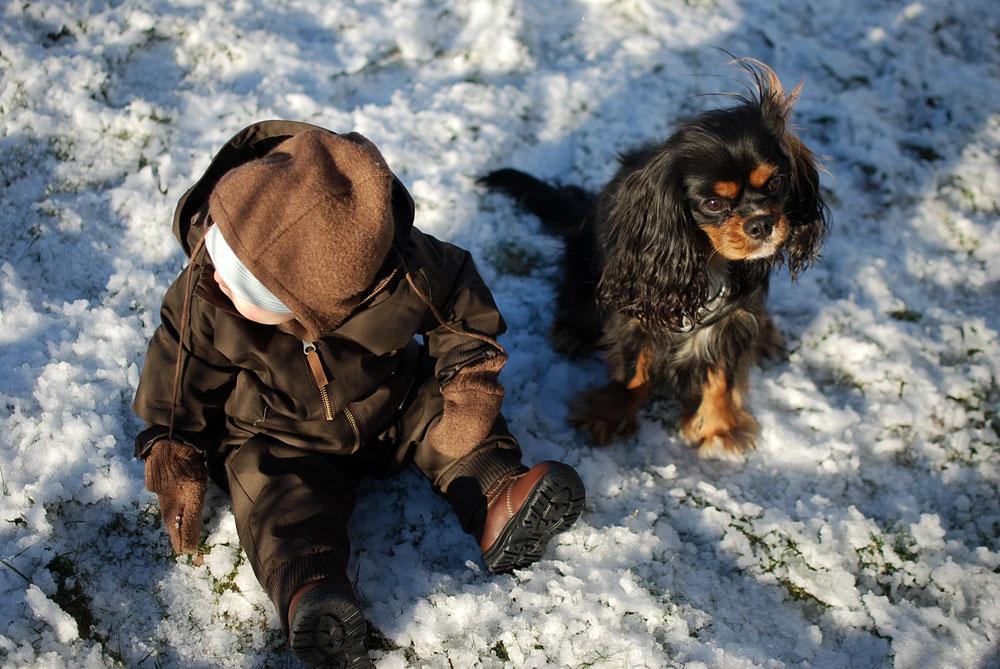 Snöyra och lyxiga presenter